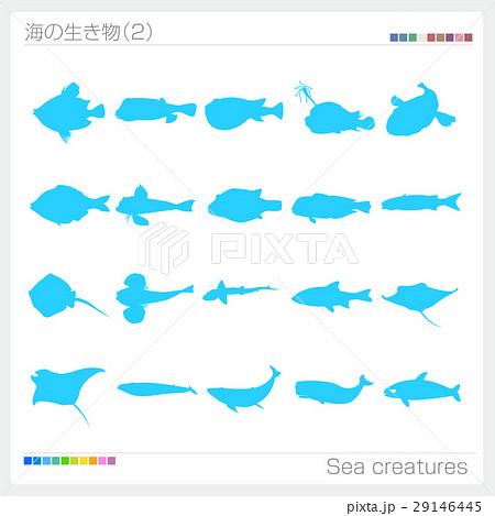 海の生き物 シルエット 29146445