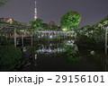 ライトアップされた亀戸天神の藤棚と東京スカイツリー・雅の夜景(HDR/超広角) 29156101