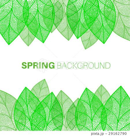 Spring leaves backgroundのイラスト素材 [29162790] - PIXTA