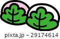 かしわ餅 和菓子 食べ物のイラスト 29174614