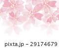 桜模様水彩 29174679