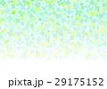 小クローバーカラフル 29175152