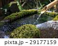 手水 つくばい 手水場の写真 29177159