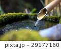つくばい 水 和の写真 29177160