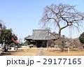 130309-05 西林寺 29177165