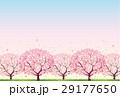 桜 29177650