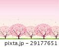 桜 29177651
