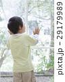 人物 男の子 子供の写真 29179989