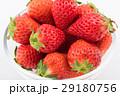 いちご 果物 苺の写真 29180756