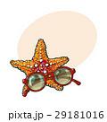ひとで ヒトデ 海星のイラスト 29181016