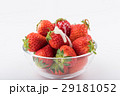 いちご 練乳 果物の写真 29181052