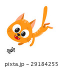 Cute and funny red cat character chasing, hunting 29184255