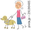 盲導犬 29190485
