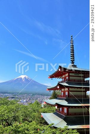 青空の富士山 五重塔と新緑の葉桜風景 29209421