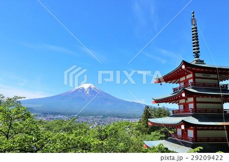 青空の富士山 五重塔と新緑の葉桜風景 29209422