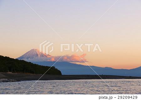 三保の松原の朝 紅富士 29209429