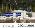 卸売市場 出荷作業 水産 カニ 29211909