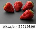 イチゴ 苺 ストロベリーの写真 29219399