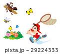 昆虫採集、虫取り、虫あみと子供、カブトムシ、チョウチョ、トンボ 29224333