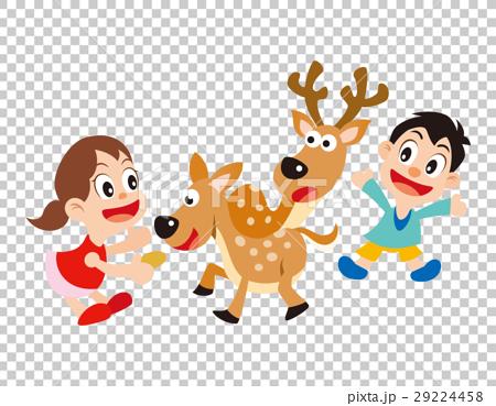 鹿 孩子 小孩 29224458