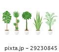 観葉植物のイラストセット 29230845