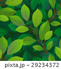 Branches and leaves seamless pattern. 29234372
