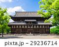 教王護国寺 東寺 金堂の写真 29236714