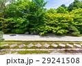 京都 天授庵 方丈の写真 29241508