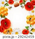 はちみつ 蜂蜜 蜜のイラスト 29242459