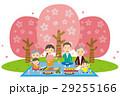 3世代 家族 花見のイラスト 29255166