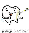 歯 29257520