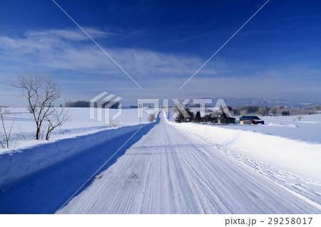 冬の美瑛 29258017