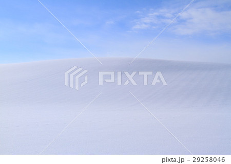 冬の美瑛 29258046