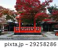 11月 紅葉の車折(くるまざき)神社 京都の秋景色 29258286