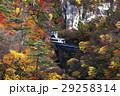 11月 紅葉の鳴子峡 東北の秋 29258314