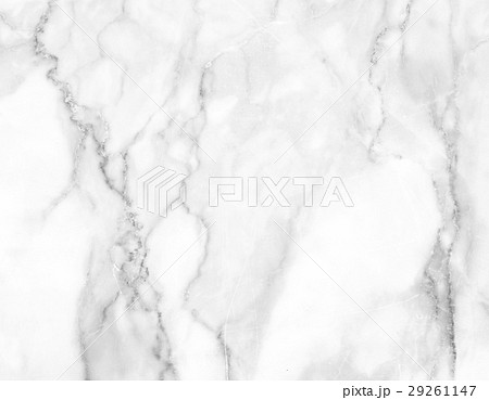 White marble background 29261147