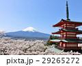 富士山 山 桜の写真 29265272