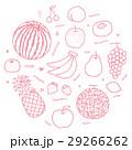 手描きイラスト果物セット 29266262
