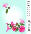 花 フローラル 装飾のイラスト 29279375