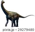 立体 3D 3Dのイラスト 29279480