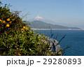 薩埵峠からの富士山 29280893