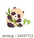 Panda. Funny Alphabet, Animal Vector Illustration 29297713