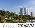 秋の浜離宮恩賜庭園と豊海のタワーマンション 29298378