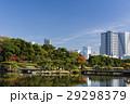 浜離宮恩賜庭園 空 高層ビルの写真 29298379