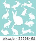 兎 白うさぎ 白ウサギのイラスト 29298468
