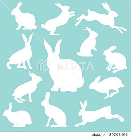 Rabbit Set 29298468