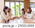若い女性、女子会、4人、レストラン 29301999