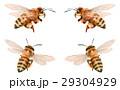ミツバチ4匹 29304929