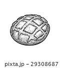 スケッチ 写生 パンのイラスト 29308687