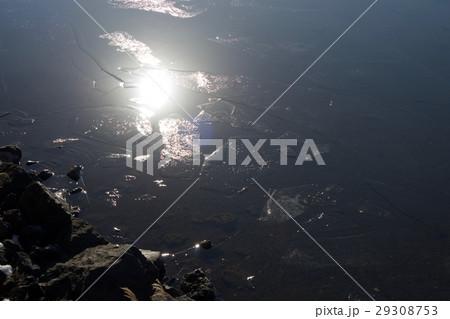 湖面と氷 29308753
